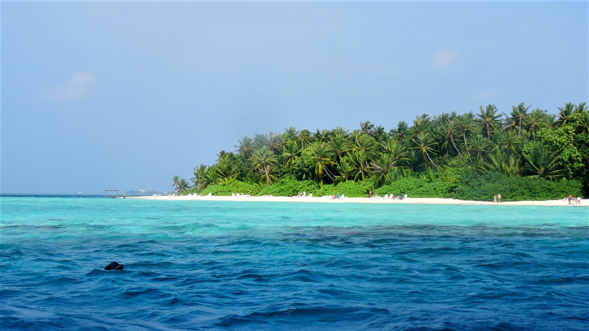 Eiland met strand en palmbomen